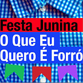 Festa Junina - O Que Eu Quero É Forró by Various Artists