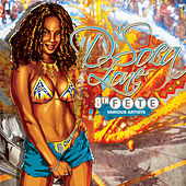 D'Soca Zone: The 8th Fete by Various Artists