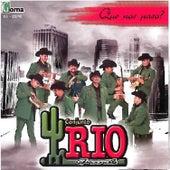 Que Nos Pasa? by Conjunto Rio Grande