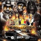 Sneakin & Geekin (Hosted by DJ E Dub) by Various Artists