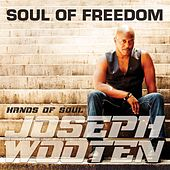Soul of Freedom by Joseph Wooten