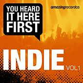 Indie, Vol. 1 (You Heard It Here First) von Various Artists