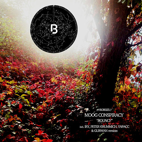 Bouncy by Moog Conspiracy