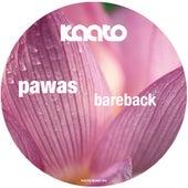 Bareback by Pawas