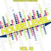 House Level, Vol. 10 (The Sound of House Music) by Various Artists