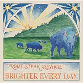 Brighter Every Day by Trout Steak Revival