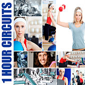 1 Hour Circuits by Various Artists
