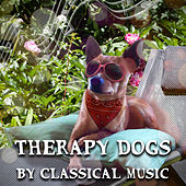 Therapy Dogs by Classical Music – Therapy Dog Training, Music Therapy for Dogs, Classical Music for Pets, Relaxing Piano Music for Dogs by World Music Therapy