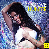 Groove Hunter, Vol. 6 by Various Artists