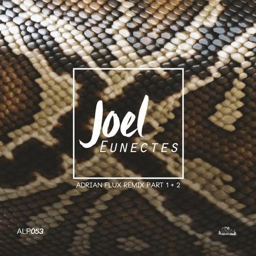 Eunectes (Adrian Flux Remix, Pt. 1 & 2) by Joel