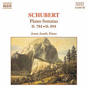 Piano Sonatas D. 784 and D. 894 by Franz Schubert