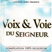 Voix & voie du Seigneur, vol. 1 (Compilation 100% religieuse) by Various Artists