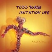 Imitation Life by Todd Burge