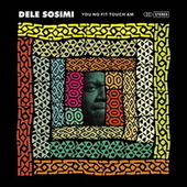 You No Fit Touch Am by Dele Sosimi