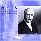 Sibelius by Various Artists