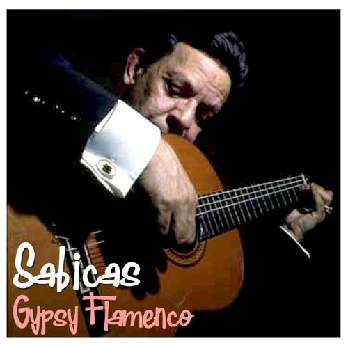 Gypsy Flamenco by Sabicas