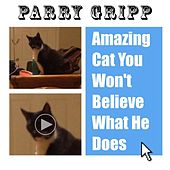 Amazing Cat You Won't Believe What He Does by Parry Gripp