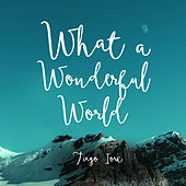 What a Wonderful World - Single by Tiago Iorc