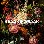 All I Want Is You by Kraak & Smaak