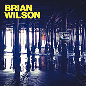 On The Island von Brian Wilson