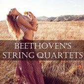 Beethoven's String Quartets by Amadeus Quartet