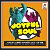 Joyful Soul Riddim by Various Artists