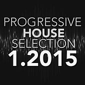 Progressive House Selection 1.2015 by Various Artists