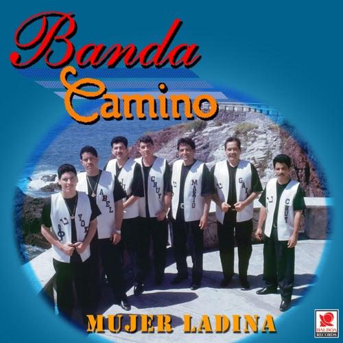 Mujer Ladina by Banda Camino