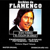 Archivo De Flamenco Vol.15 (Juan Torres) by Juan Torres