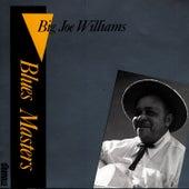 Blues Masters Vol. 2 by Big Joe Williams