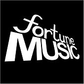 Sounds of Fortune Volume. 1 von Various Artists