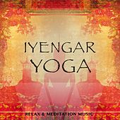 Iyengar Yoga, Vol. 1 (Relax & Meditation Music) by Various Artists