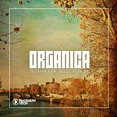 Organica #19 by Various Artists
