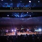 Piérdeme el Respeto by Playa Limbo