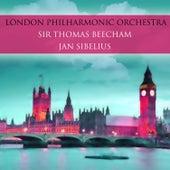 Jean Sibelius by Various Artists