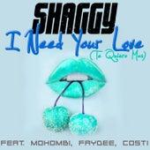 I Need Your Love (Te Quiero Mas) by Shaggy