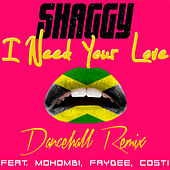 I Need Your Love (Don Corleon Dancehall Remix) by Shaggy