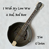 I Wish My Love Was A Red, Red Rose by Tim O'Brien
