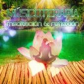 Músicoterapia – Meditación & Reflexión, Música Clásica Relajante, Descanso, Música de Arpa para Yoga, Liberar el Cuerpo y el Alma, Suena en el Fondo, Calma y Tranquilidad by Expertos en Música Calmantes