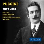 Puccini: Turandot by Pinuccia Perotti