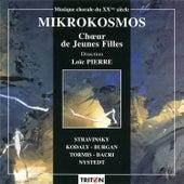 Mikrokosmos by Loïc Pierre