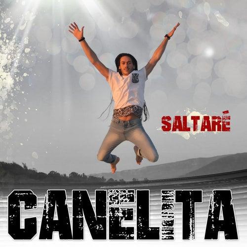 Saltaré by Canelita