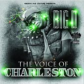 The Voice of Charleston by Big D