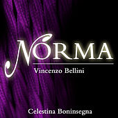 Bellini: Norma by Various Artists
