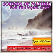 Sounds of Nature for Tranquil Sleep: 240 Minutes Special Edition by Sounds Of Nature