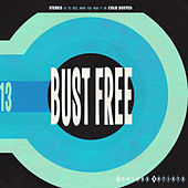 Bust Free 13 by Various Artists