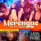 Talento Venezolano, Vol. 1: Merengue de Mi Tierra by Various Artists