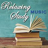 Relaxing Study Music by Various Artists