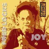 Joy by Fred Locks