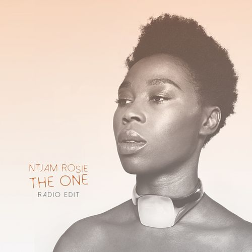 The One (Radio Edit) by Ntjamrosie